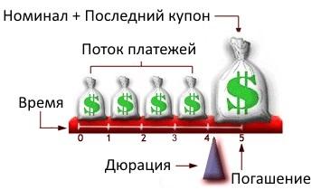 схематическое изображение едюрации